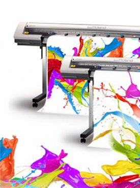 Printing & Signages